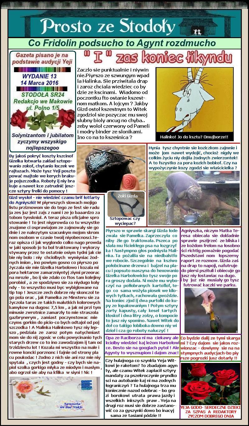 PZS 13